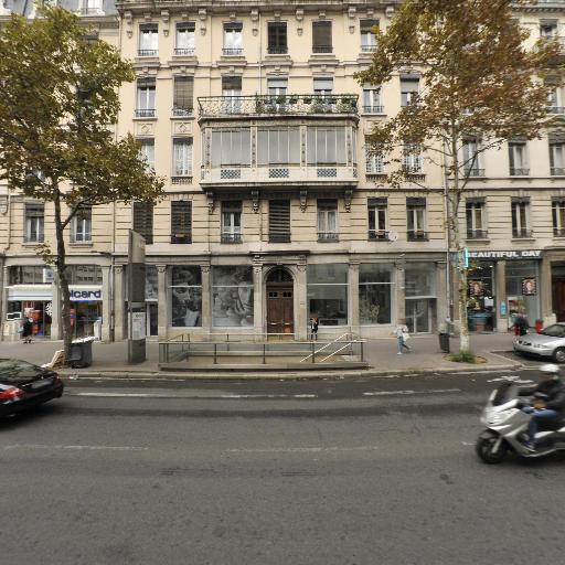 Le Musée des Moulages - Musée - Lyon